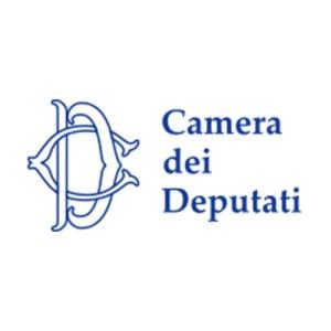 Logo-Camera